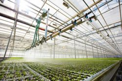 Wasserdruckregler, Wasserwächter und Ventile für die Haus- und Bewässerungstechnik